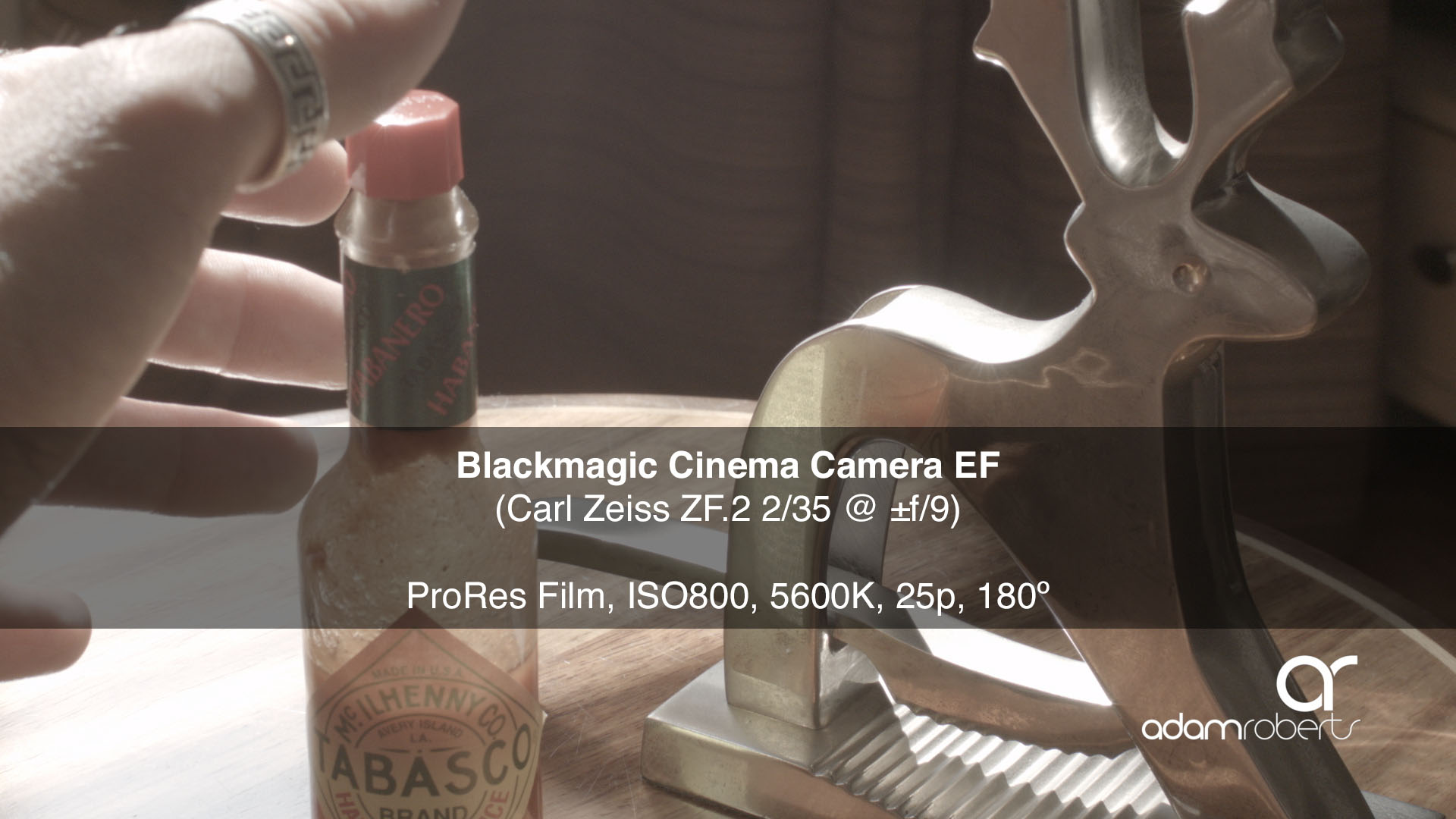 BMCC %22Bloom%22 Test.jpg